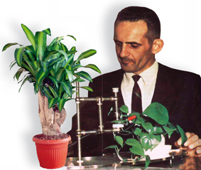 Cleve Backster si plantele lui experiment